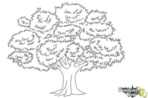 how to draw tree pictures how to draw a realistic tree drawingnow
