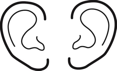 ear coloring pages printable ears coloring pages ears