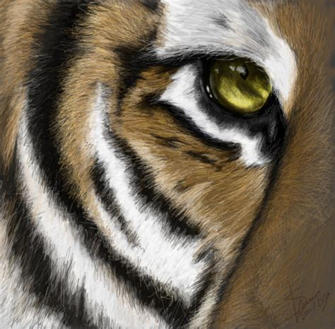 tigers eye tiger s eye digital by sheyenne johnson