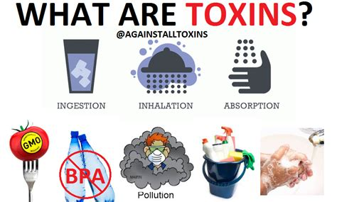 what are what are toxins against all toxins