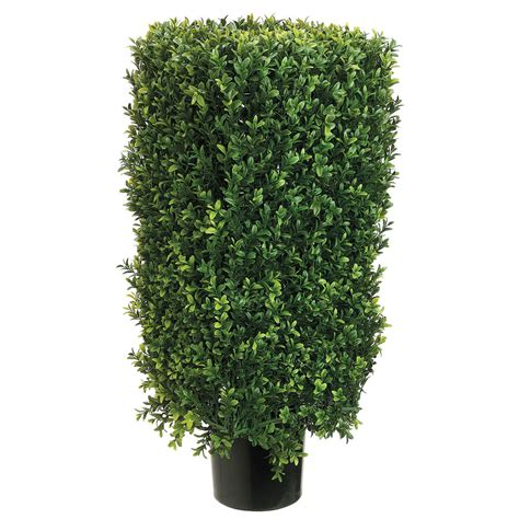 potted topiary plants 30 inch rectangular boxwood topiary potted lpb232 as