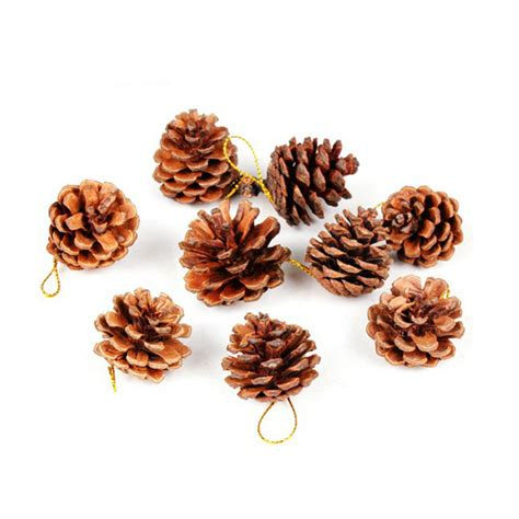 tree with pine cones decorating pine cones reviews shopping decorating