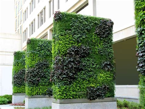 garden on wall world class green wall vertical garden by technic garden
