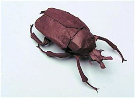 origami beetle the origami resolution damn interesting