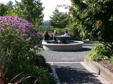 of washington botanic gardens 302 found