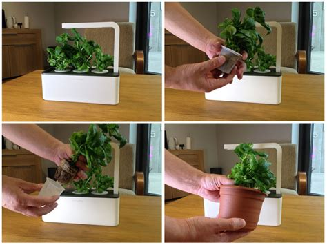 Thyme In Your Kitchen by Grow Your Herbs On Your Kitchen Counter With Smart Herb Garden