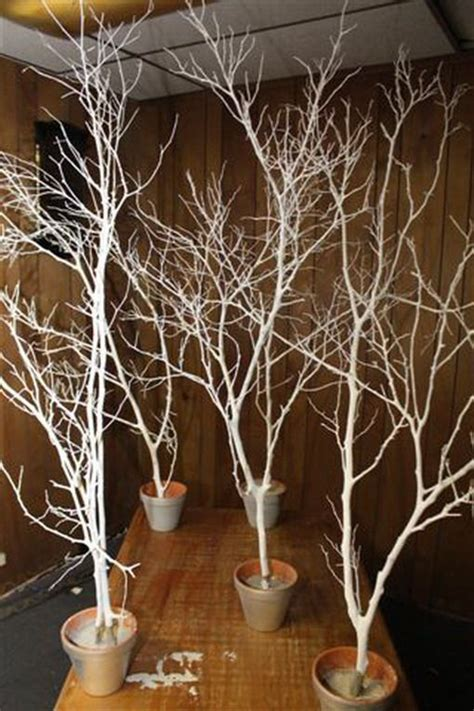 spray painting tree branches spray paint branches white silver and put in pots outside