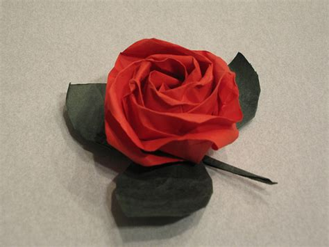 rosa origami origami a by any other name together with japan