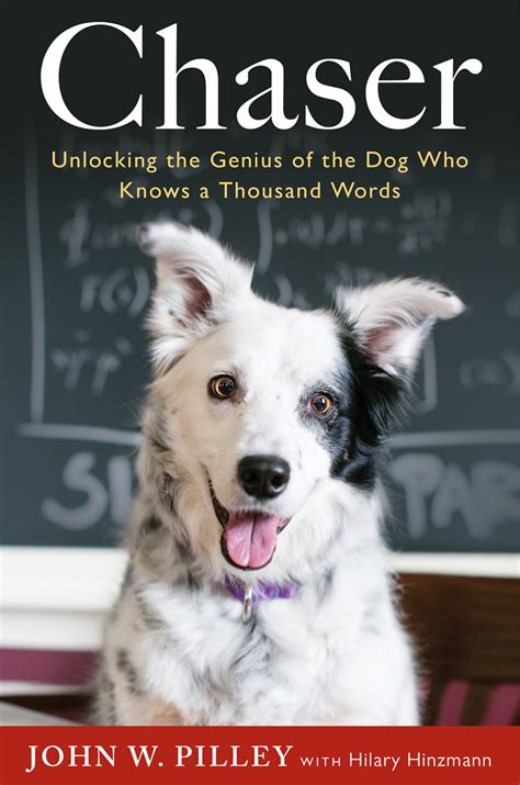 picture books about dogs chaser can dogs learn language book review stale