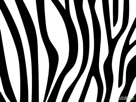 zebra stripes draw zebra stripes