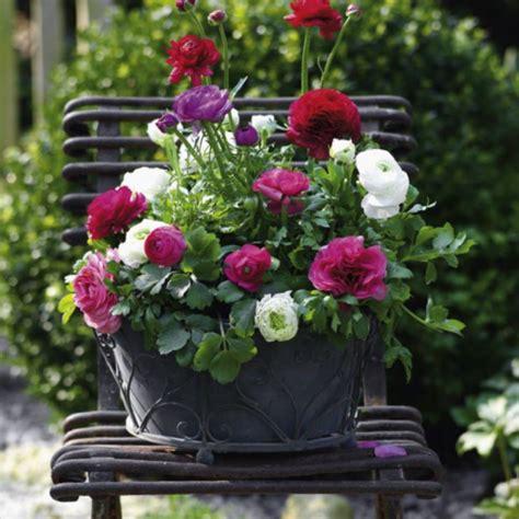 Blumenkübel Bepflanzen Vorschläge by Balkonk 228 Sten Ideen F 252 R Alle Jahreszeiten Zum