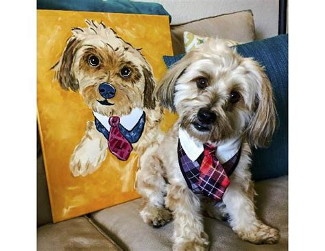 painting with a twist paint your pet 2016 painting with a twist panama city fl top tips before