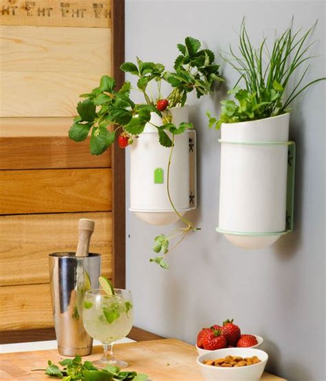 ideas to decorate kitchen walls 20 kitchen wall decors and ideas mostbeautifulthings