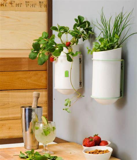 decoration ideas for kitchen walls unique kitchen wall d 233 cor ideas decozilla