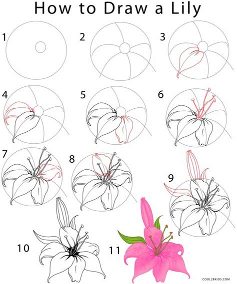 flowers step by step how to draw a step by step pictures cool2bkids