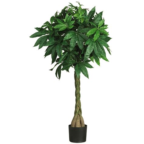 potted tree 51 inch money tree potted 5249
