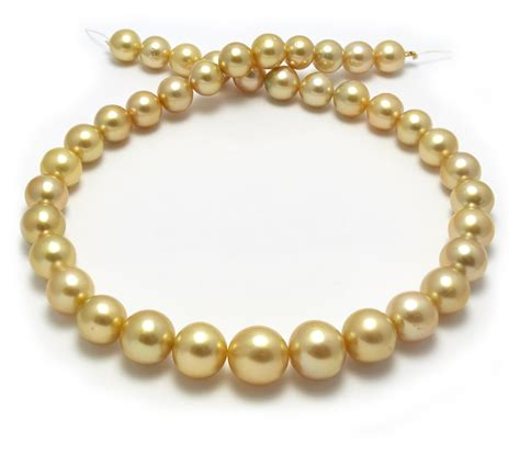 pearls with gold 13mm golden south sea pearl necklace with near gold