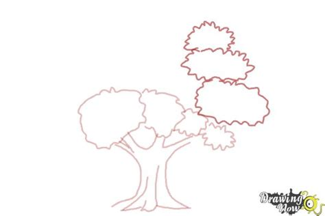 how to draw a realistic tree drawingnow