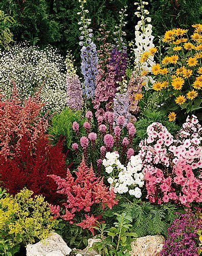 garden flowers perennials theatre wisting away
