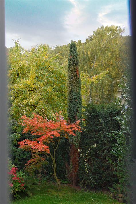 Der Garten Der Liebe by Im Garten Der Liebe Poetry Sights Wiengrid