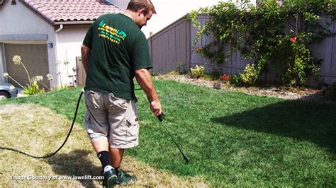 spray painting your lawn california s green living delusion collapses as residents