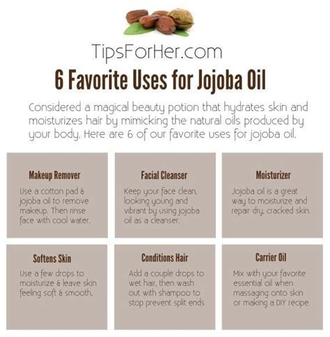 jojoba benefits 1000 ideas about jojoba on shea butter