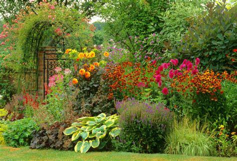 garden border plants flowers a summer border idea with dahlias helenium and easy