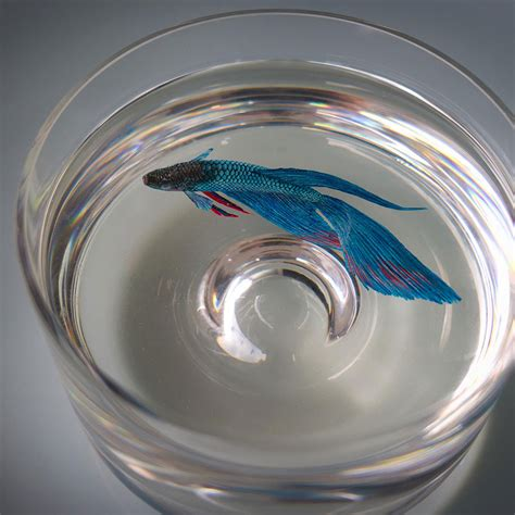 acrylic paint in resin hyper realistic 3d paintings made with acrylics in layers