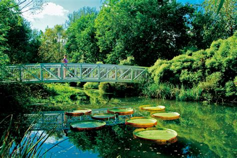 Botanical Gardens Gainesville by Back To Awesome Things To Do In Gainesville