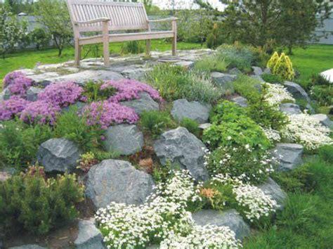 rock garden landscaping ideas best 25 large landscaping rocks ideas on