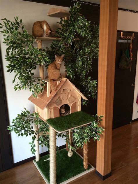 tree for cats diy cat tree offers alternative to conventional scratching