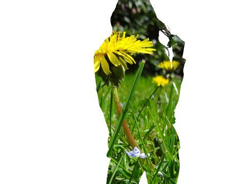 Garten In Der Bibel by Liebestipp Aus Der Bibel Du Bist Mein Garten Gotteskuss