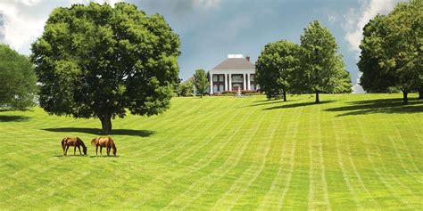 acreages for sale 100 acreages for sale bean station tennessee real
