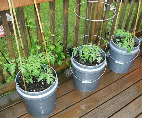 potted vegetable garden potted vegetable garden ideas