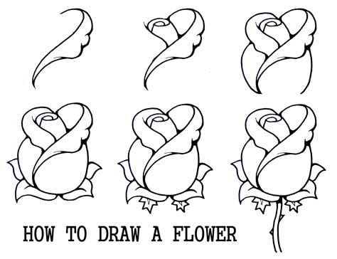 flowers step by step how to draw a flower step by step daryl hobson artwork