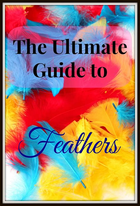 the ultimate craft book for the ultimate guide to feathers and our catcher craft