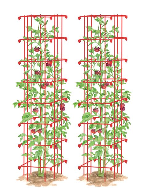 Gardeners Supply Tomato Tower Tomato Cages Tomato Tower Set Of 2 Gardeners