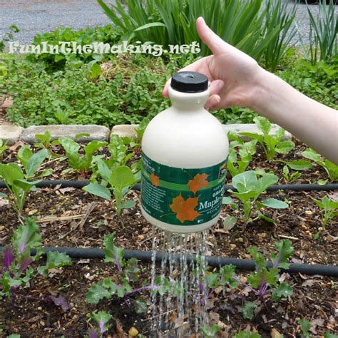 from recycled materials cool thumb controlled watering pot made with recycled