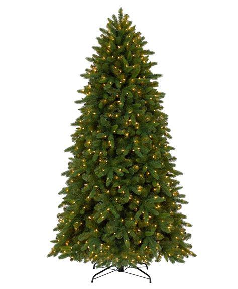 chrsitmas tree classic fraser fir tree tree classics