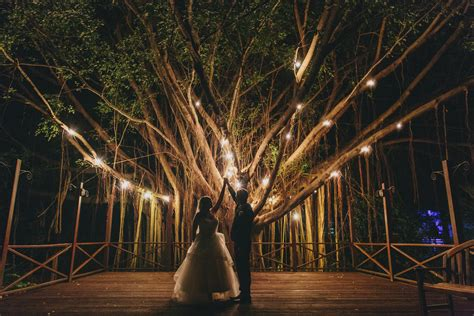 white lights for wedding 19 wedding lighting ideas that are nothing of