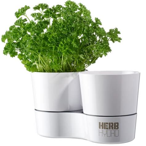 herb pot herb hydro pot wit