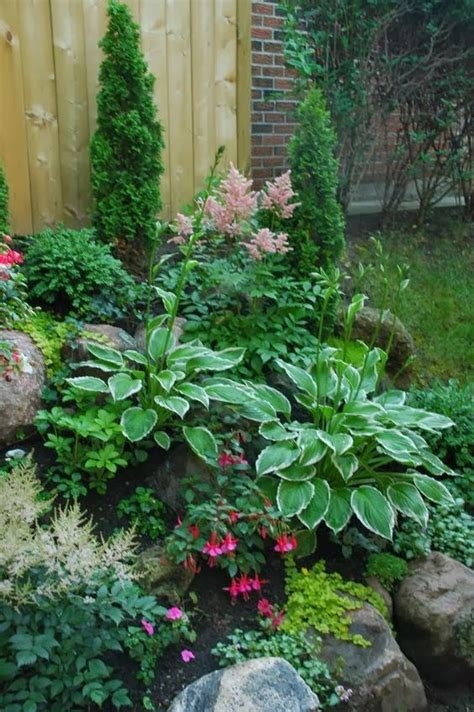 rock garden plants for shade 25 best ideas about shade garden on shade