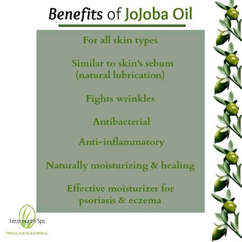 jojoba benefits benefits of jojoba lemongrass spa