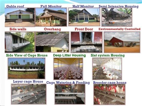 types of houses types of houses in india with pictures roselawnlutheran