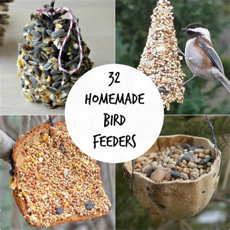 easy bird feeder crafts for 32 easy bird feeders happy hooligans