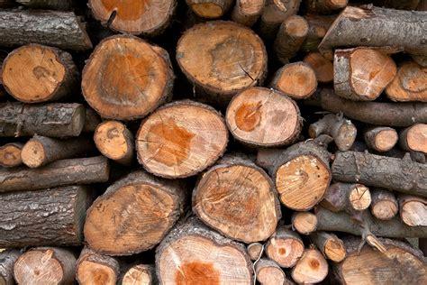 woodworking logs wood logs hdr by somadjinn on deviantart