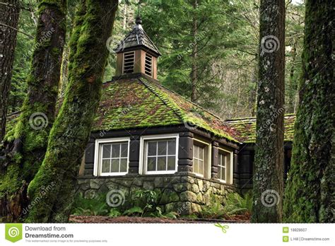 Village Builders Floor Plans mossy country stone cottage in the woods royalty free