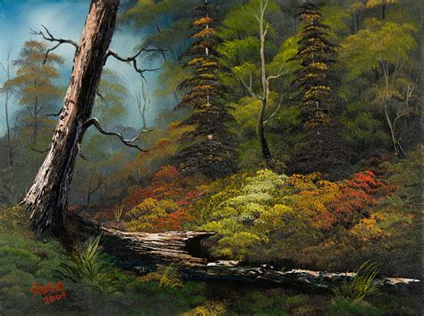 bob ross painting forest secluded forest painting by c