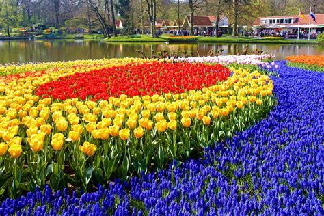 amsterdam botanical garden botanical gardens the netherlands