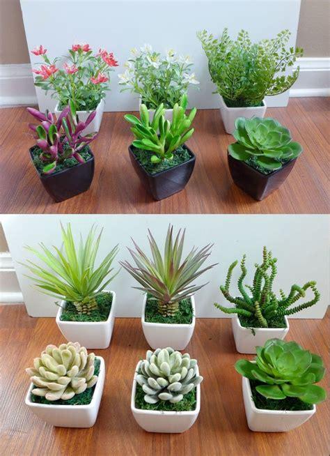mini potted plants 3 mini potted artificial flowers unkillable succulents
